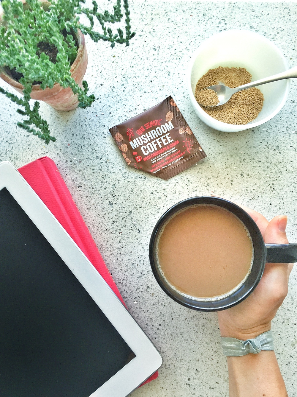 Four Sigmatic coupon