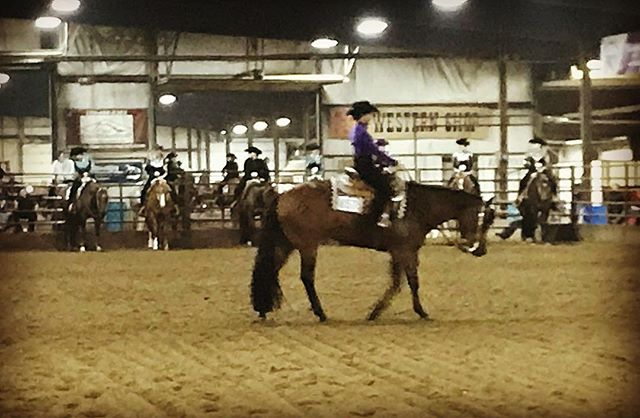 We're in full swing today! Come on out and enjoy our #aqha shows all weekend!  #horseshow #gohorseshow