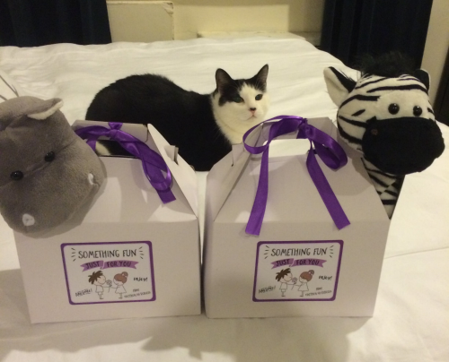 Customized kids boxes for our New Years Eve wedding (cat not included)