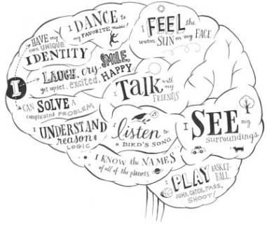 brain-functions-2.jpg