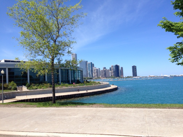 The Shedd Aquarium and a glimpse of downtown Chicago from the lakefront