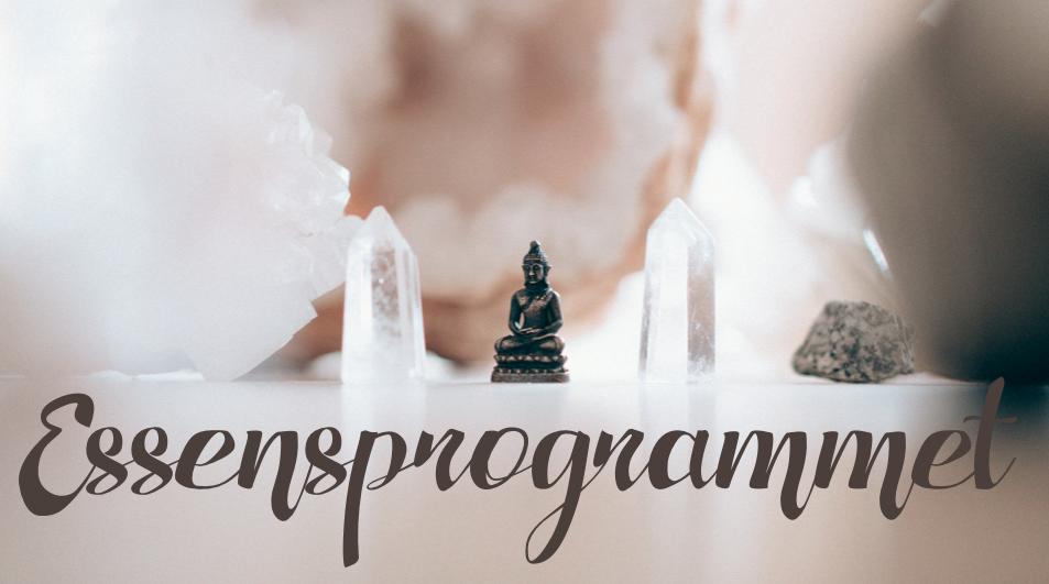 Essensprogram intuition essens kundalini yoga program online nickoline camille meditation yoga selvværd selvtillid mantra hjem til dig selv din kerne yogi business manifestation penge parforhold soulmate