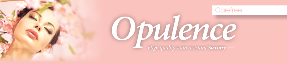 Opulence-New-Page-Header.jpg
