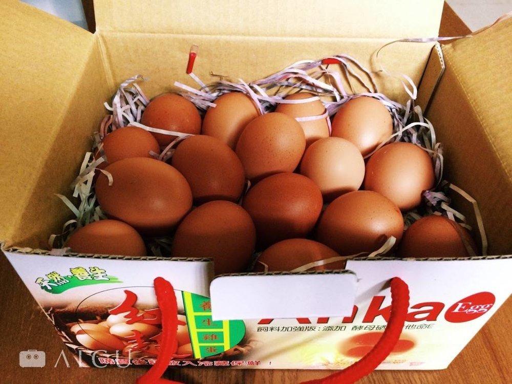 除了超市之外,也可以到住家附近農會或有機店,確認每週牧場送來的日子,固定採買最新鮮的雞蛋。