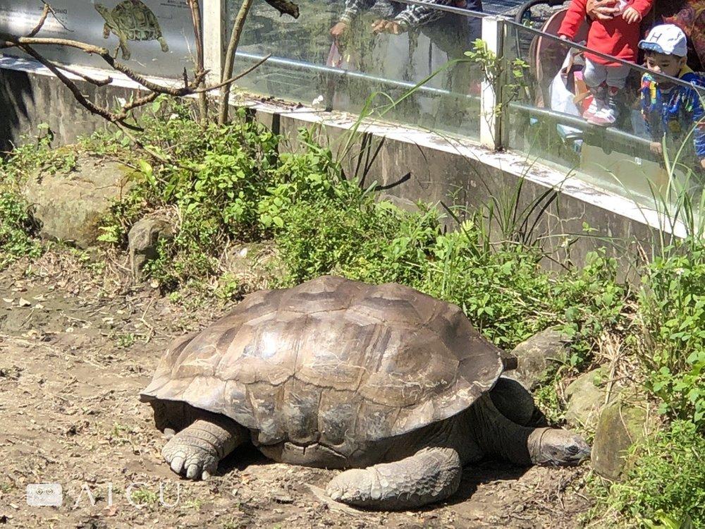 動物園0006.jpg
