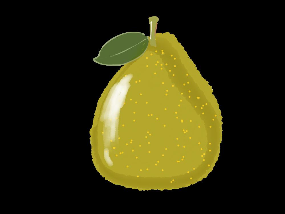 柚子.png