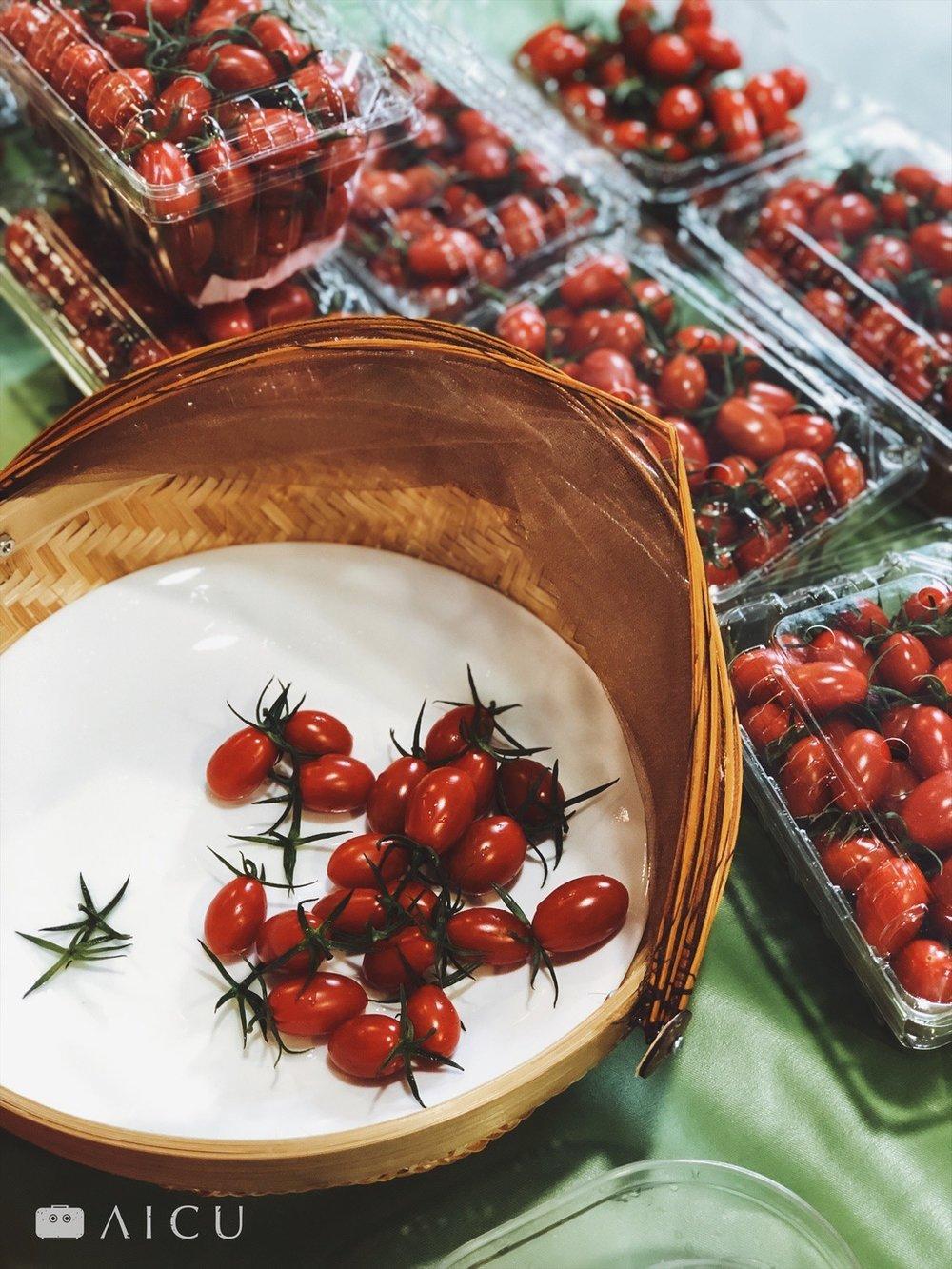 比如小番茄,現在這時節又多又划算,比較多家,並且記得名字和電話。