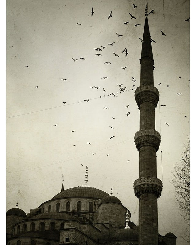 #mosque #Istanbul #Turkey #sepia #monochrome  www.facebook.com/wildphotoaustralia