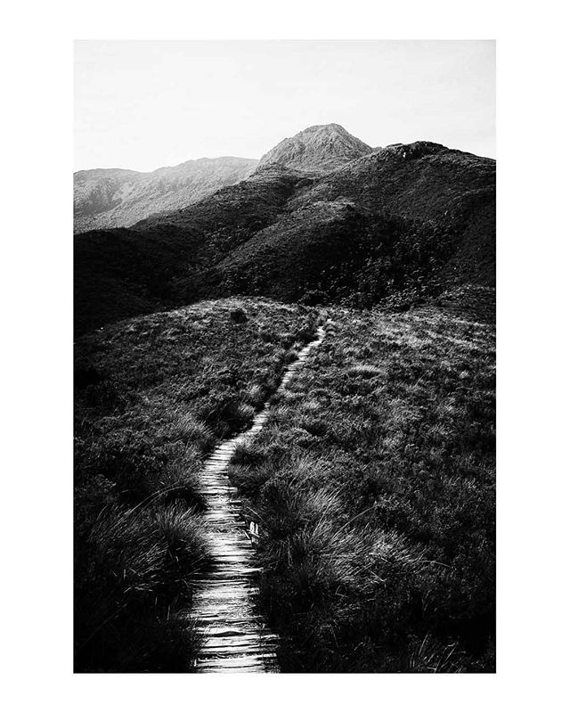 The path to Mt Anne, south west Tasmania, Australia. (repost)  www.facebook.com/wildphotoaustralia www.wildphotoaustralia.com  #tasmania #mountains #wilderness #australia #blackandwhite #monochrome