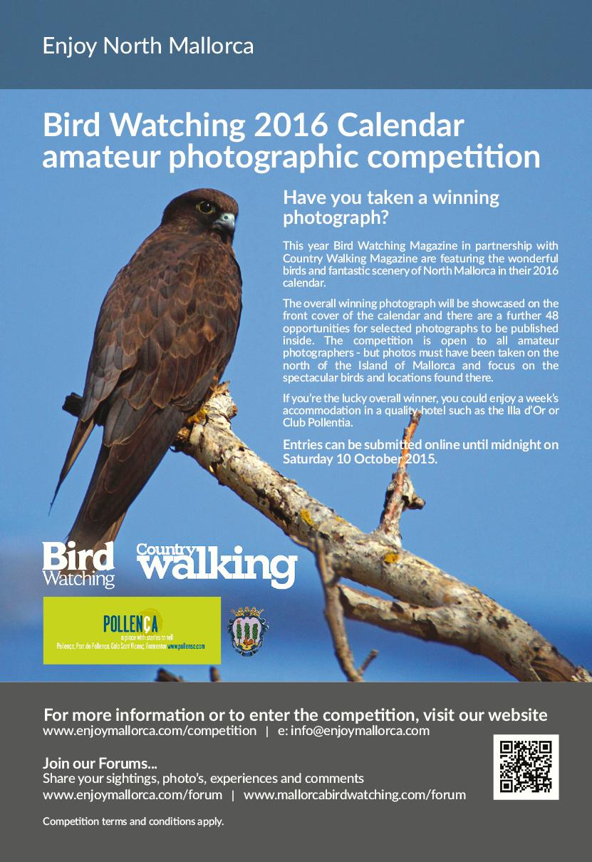 TOTN 17.9.15 Birdwatching.jpg