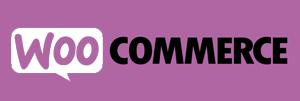 _0004_WooCommerce-wordpress-wesbite design-toronto-gta.jpg