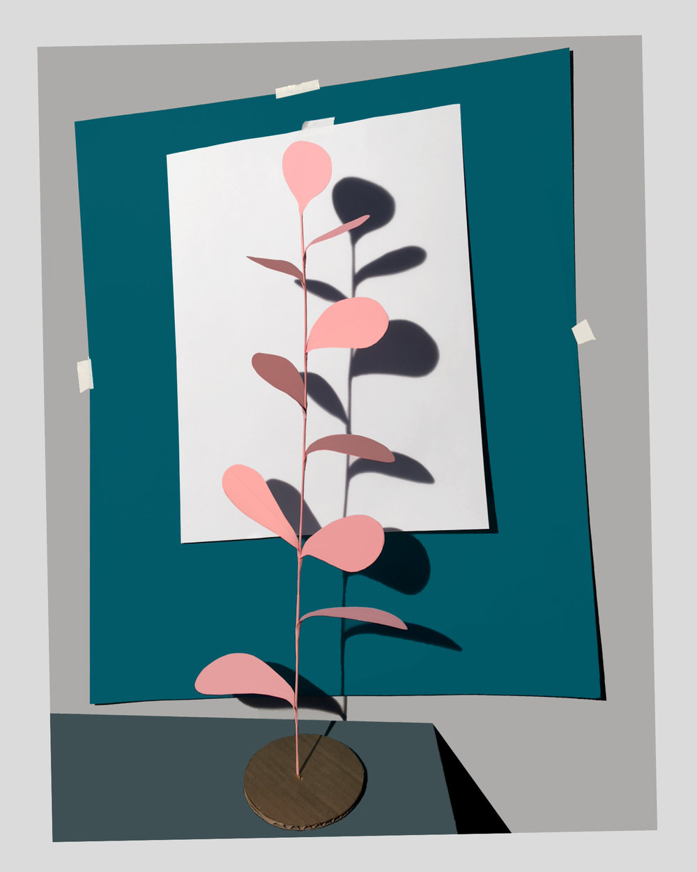Plant2018rev.jpg