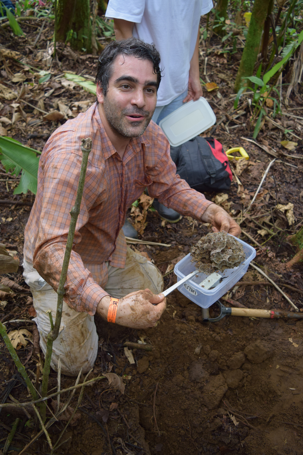 Dr. Adrian Pinto, University of Costa Rica Adrian is our local knowledge and leaf cutter ant natural history expert. He can dig an entire leaf cutter ant nest with a tea spoon in 15 minutes or less, extracting fungal chambers all the way down. His work focuses on microbial associations with symbiotic fungi and biocontrol.