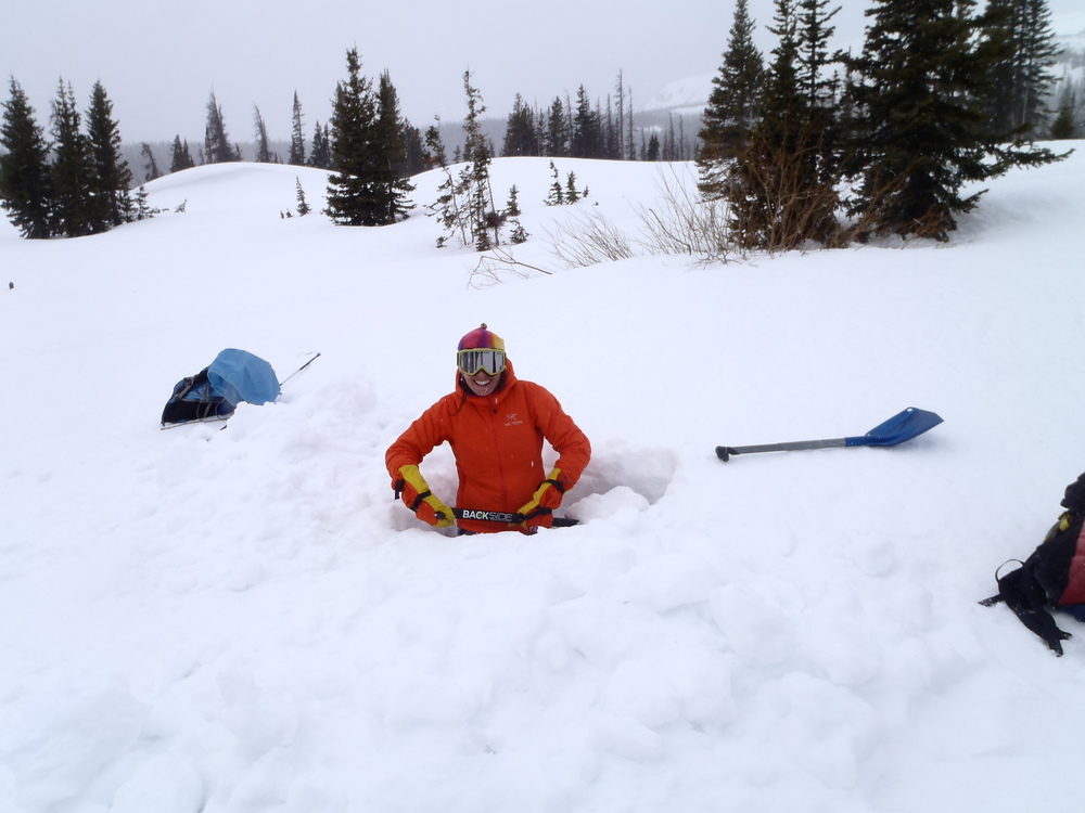 Snowies field work.jpg