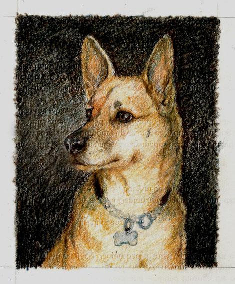 Dog-Portrait-Luckie-sketch