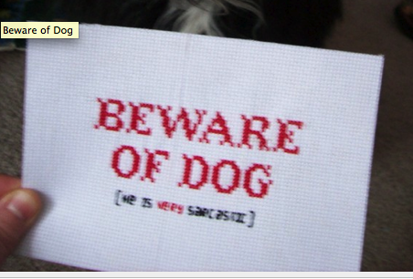 Beware of Dog - He is very Sarcastic