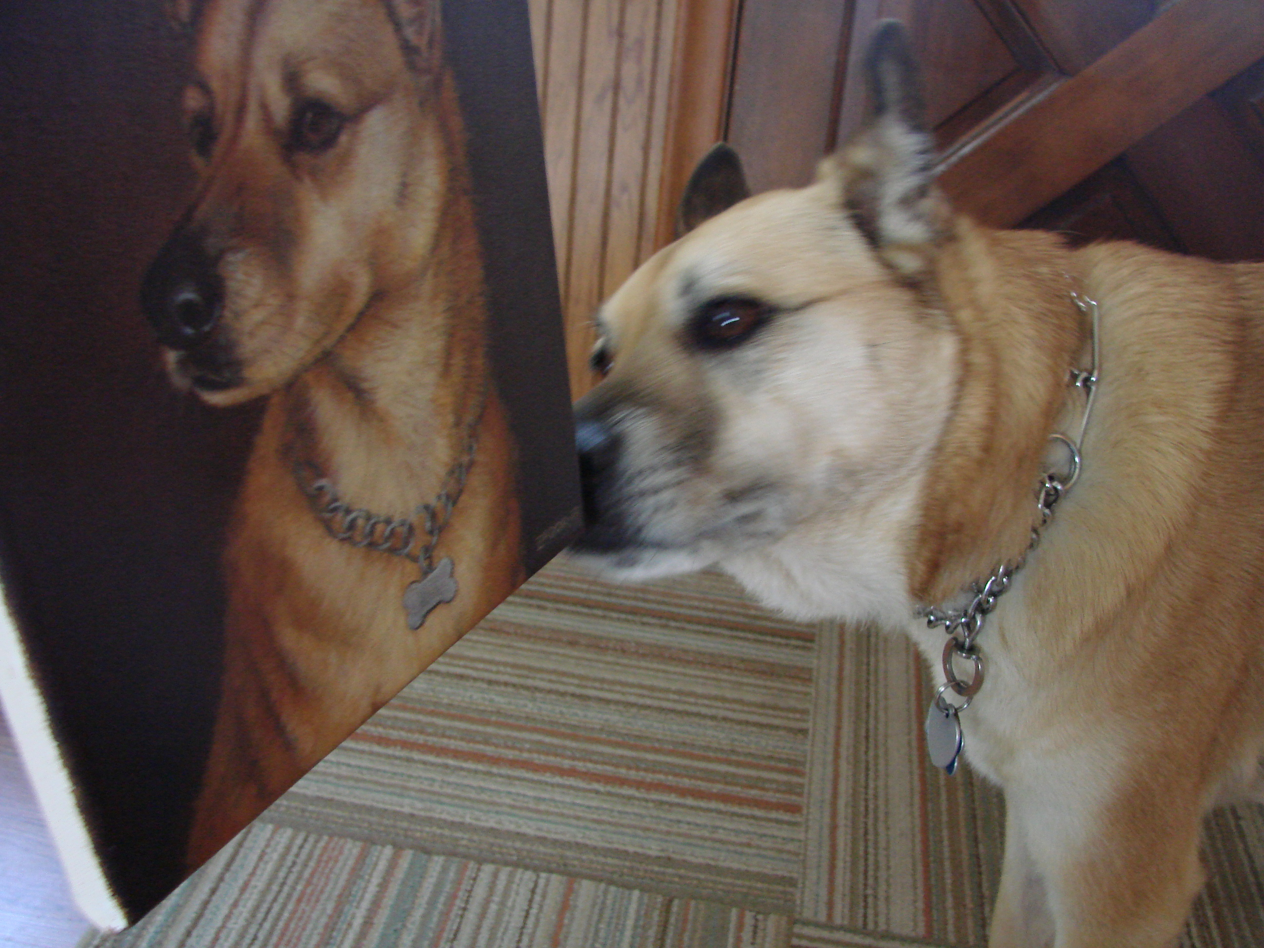 Luckie checking out her portrait