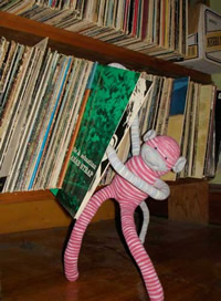 Madison, in her natural state is a little obsessive, likes to have things organized. She loves to make lists, boss the other monkeys around, and put the house in order. Here she is collating her extensive album collection!