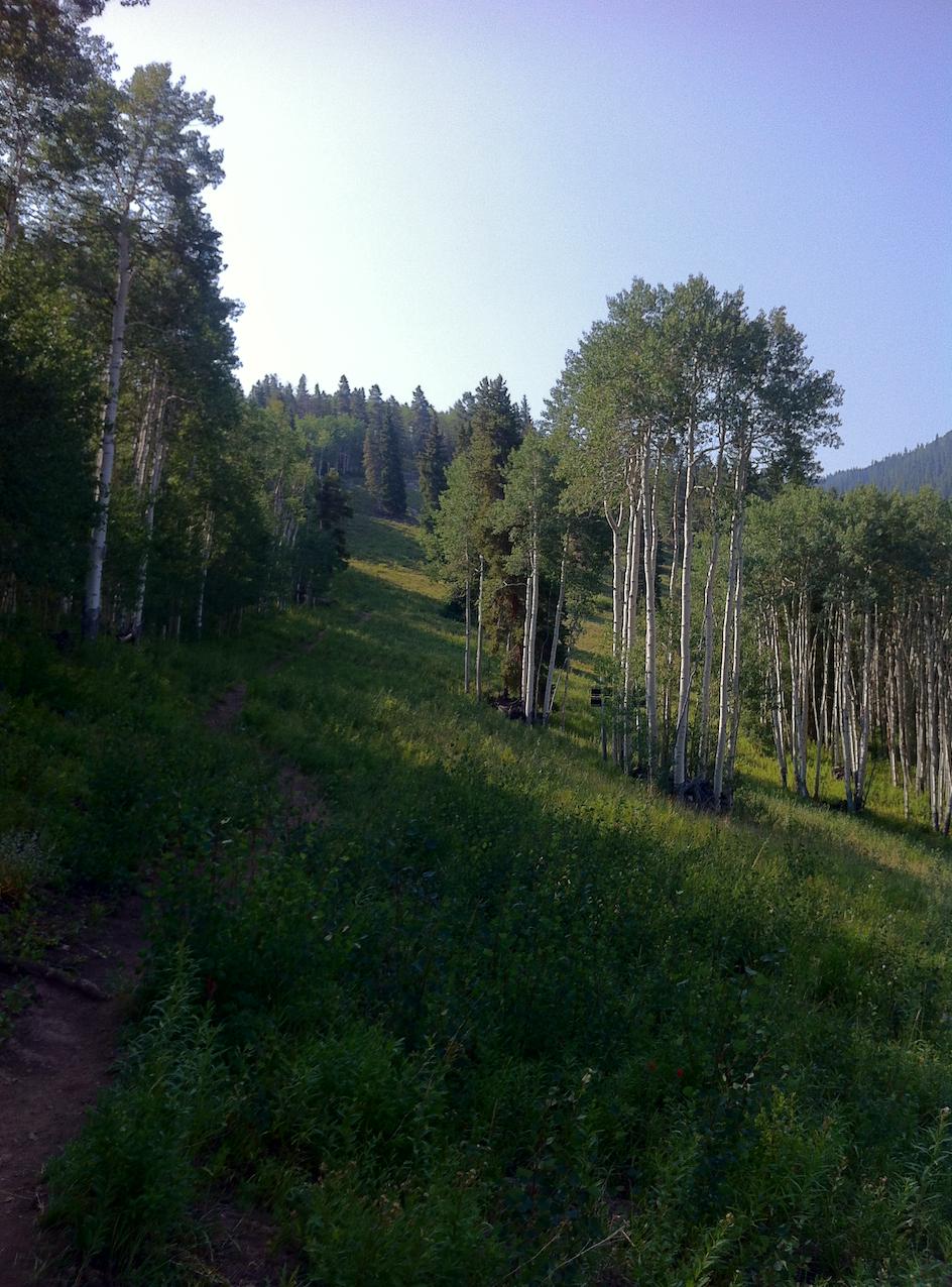Headed up Gentleman's Ridge...it feels a lot steeper in the summer!