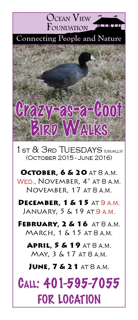 A new season of Crazy-as-a-Coot bird walks is starting. All bird watching skill levels are welcome.