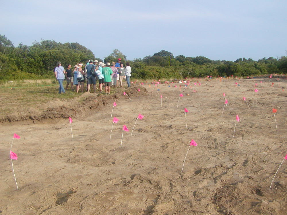 2015 Mystery Walk to an archaeologic dig.