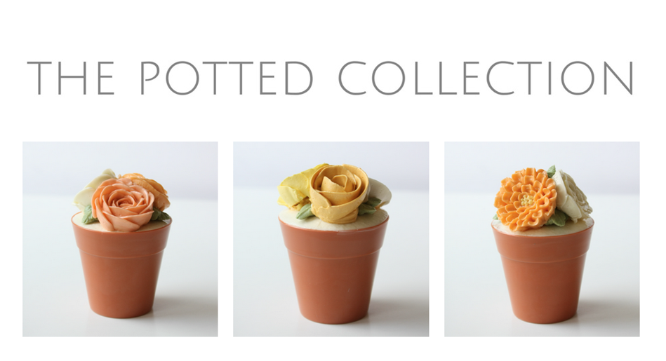 ECBM Potted Collection 3.PNG