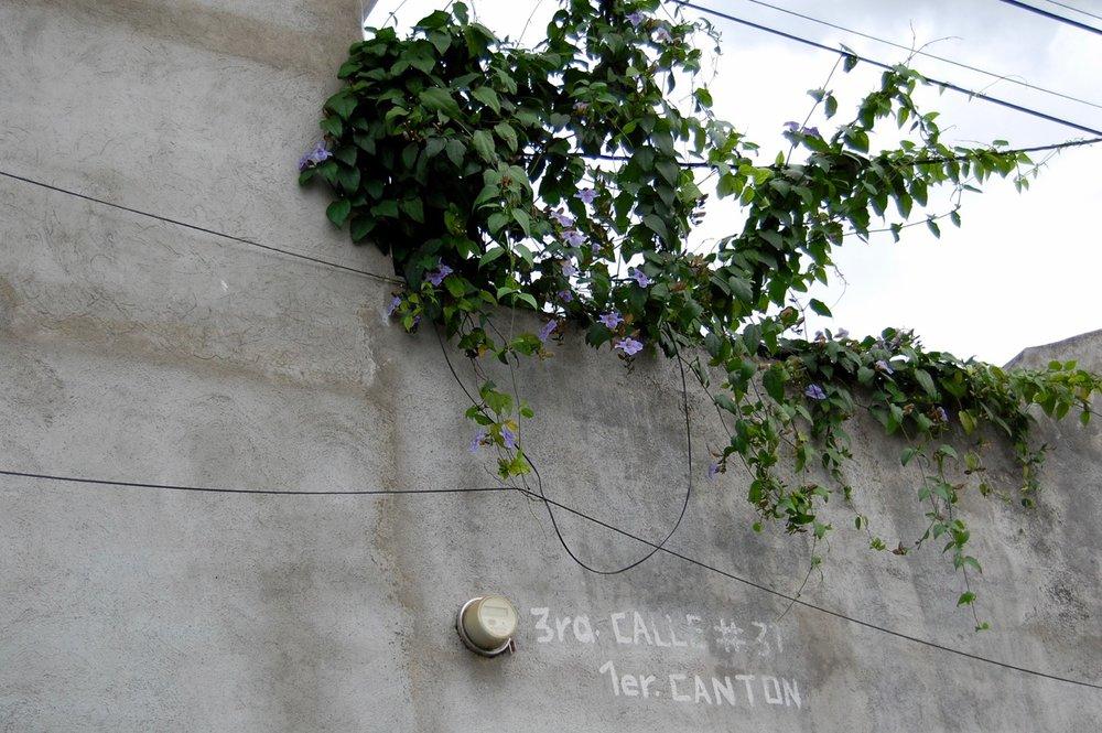 San Pedro Las Hueartas DAY 4 - 25.jpg