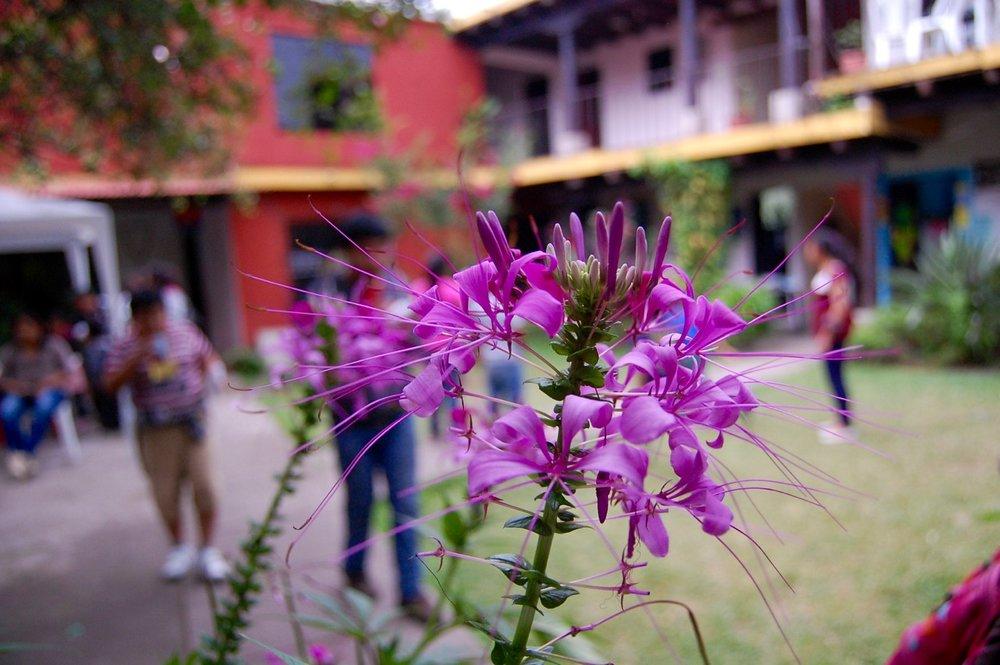 San Pedro Las Hueartas DAY 4 - 47.jpg