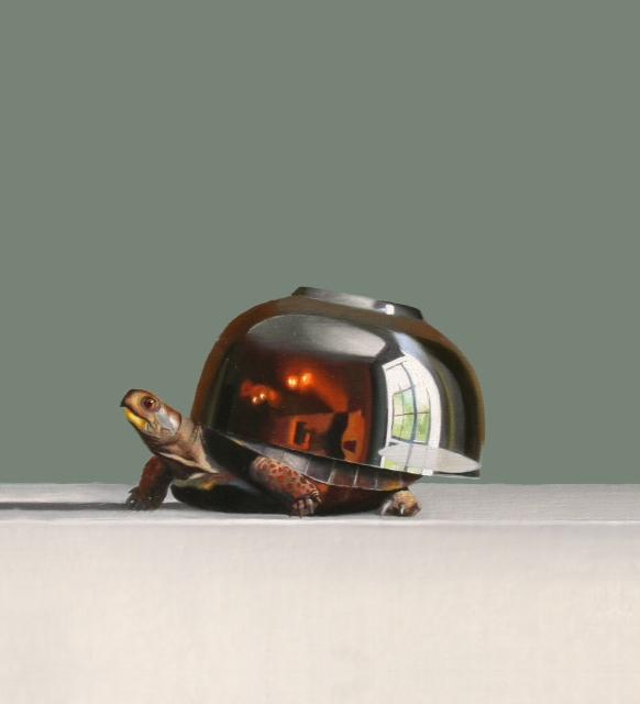 robert_lange_turtle .jpg