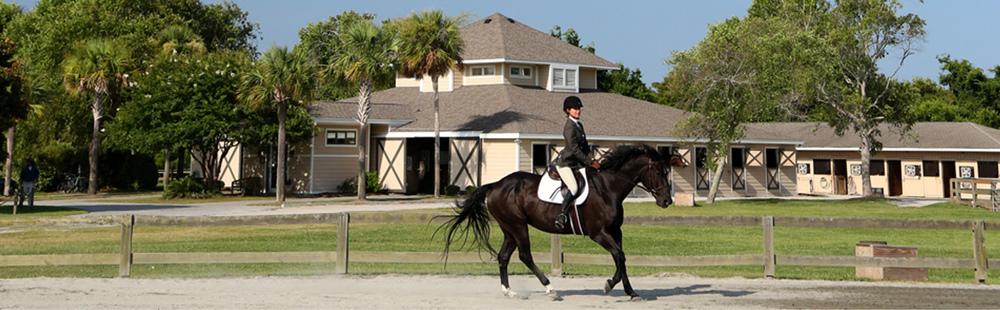 Equestrian 4.jpg