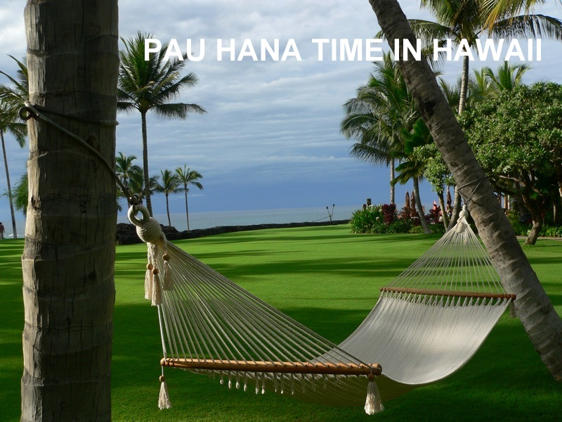 HawaiiHammock.jpg