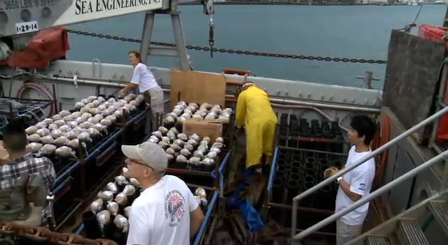 Firework  shells being professionally loaded onto a barge and prepared for detonation