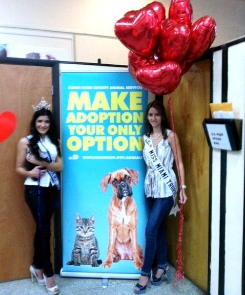 MMT Queens participating in the Valentine Pet Adoption Campaign