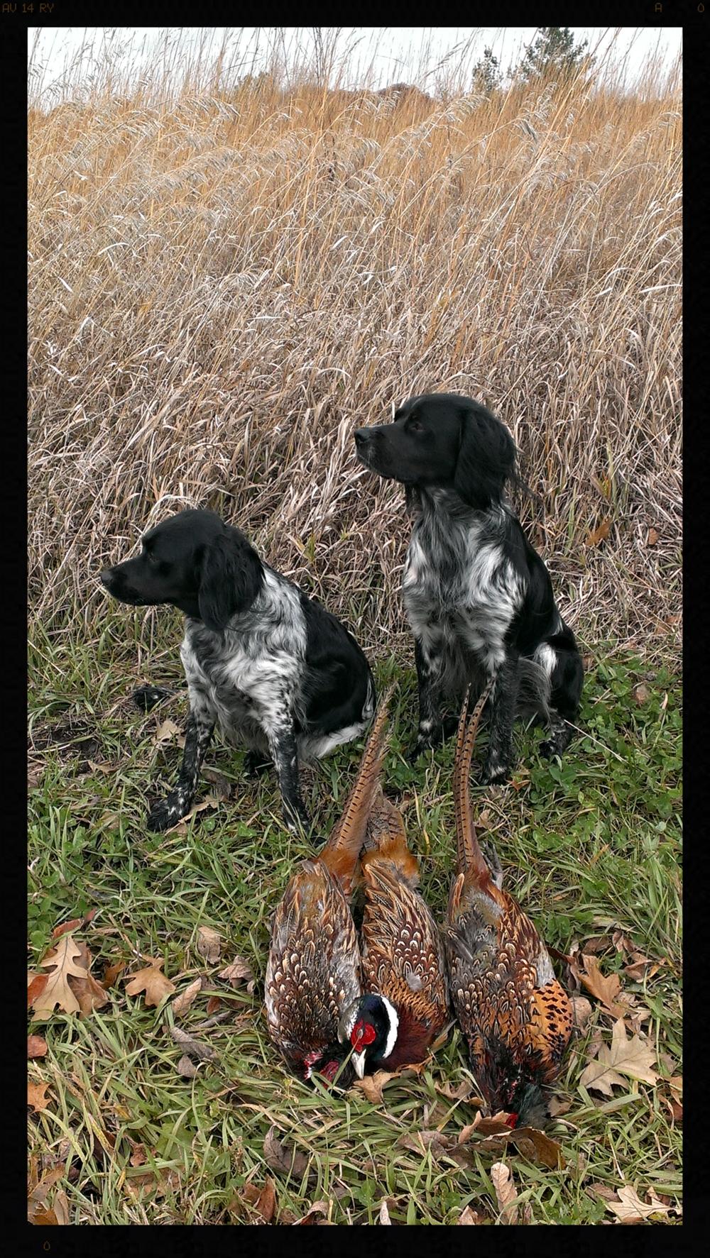 Gwen and Felix after a successful November, 2013 hunt.