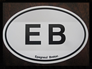 Euro style EB vehicle sticker