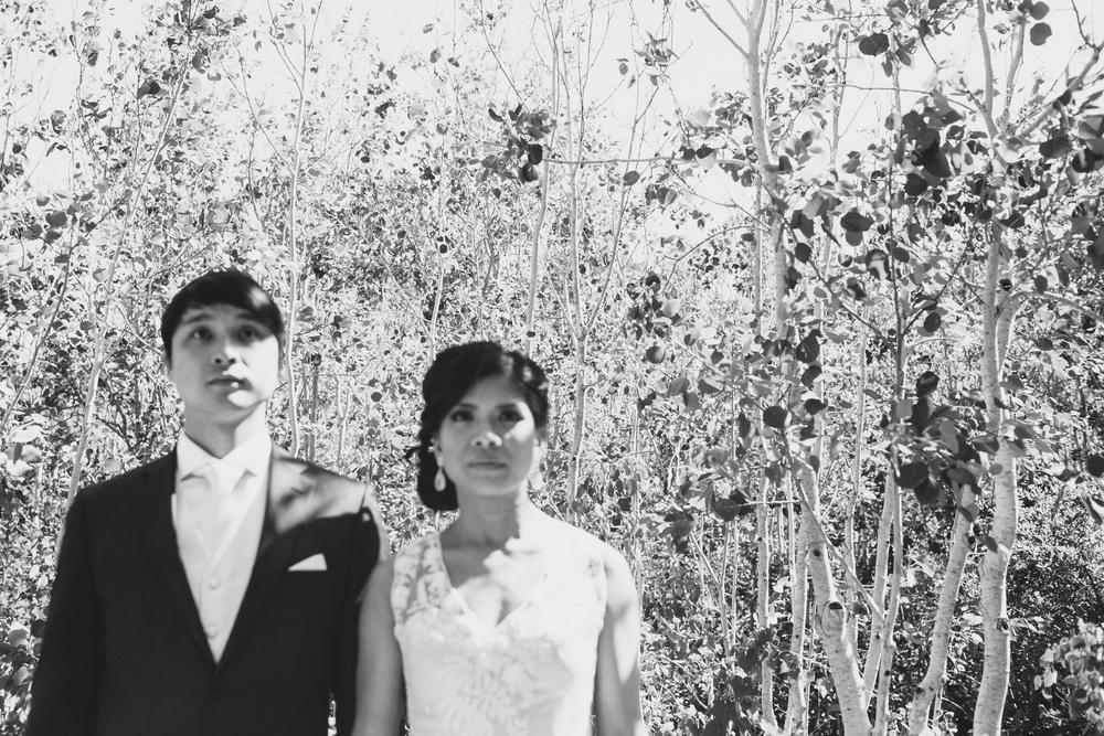 Tilden_Wedding_Berkeley-27.JPG