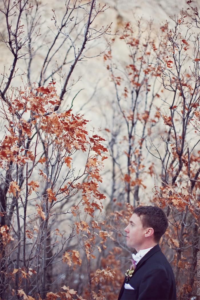 Ann_Mike_Colorado_Springs_Garden_Of_The_Gods_Wedding-35.JPG