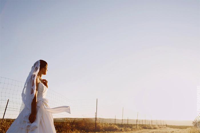 Brent_Creek_Winery_Livermore_Wedding-16.JPG