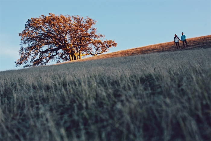 Winter_Trees_Golden_Hills_Dry_Grass_Engagement_Photography_Livermore-13.JPG