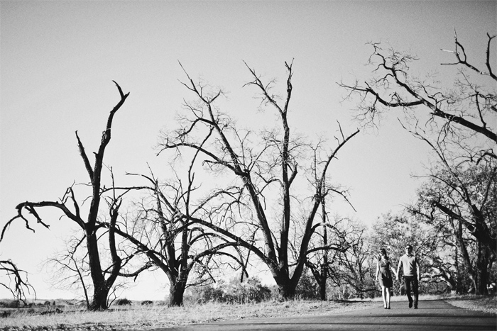 Winter_Trees_Golden_Hills_Dry_Grass_Engagement_Photography_Livermore-02.JPG