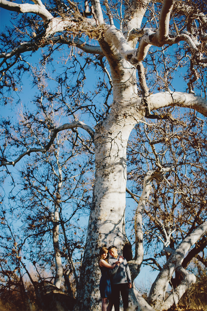 Winter_Trees_Golden_Hills_Dry_Grass_Engagement_Photography_Livermore-07.JPG