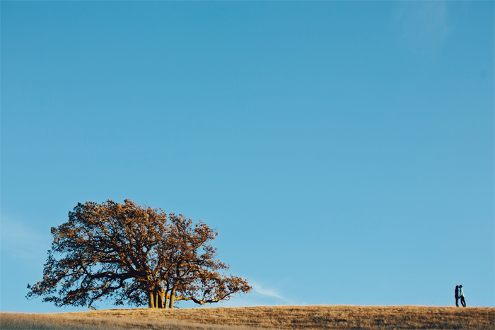 Winter_Trees_Golden_Hills_Dry_Grass_Engagement_Photography_Livermore-12.JPG