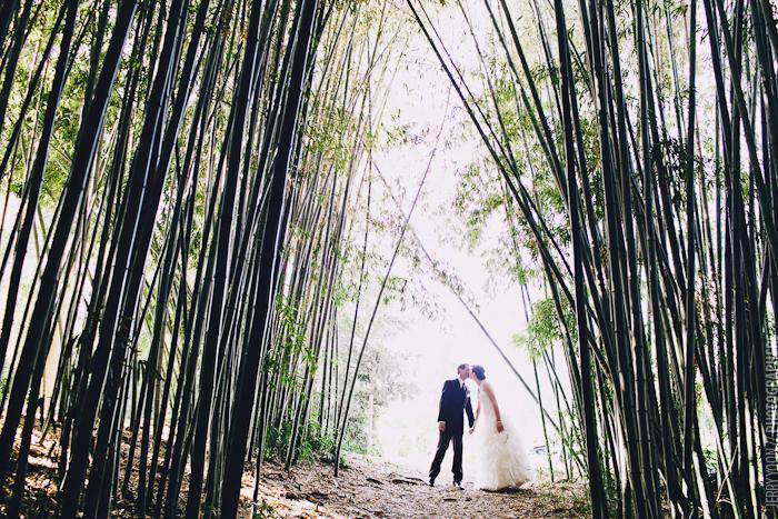 Los_Angeles_County_Arboretum_Wedding_Rococo_Reception-26.JPG