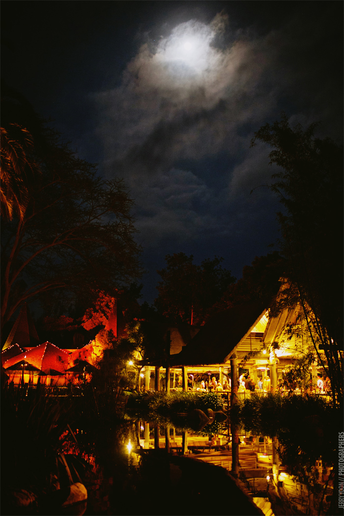 San_Diego_Wild_Animal_Park_Wedding-73.JPG