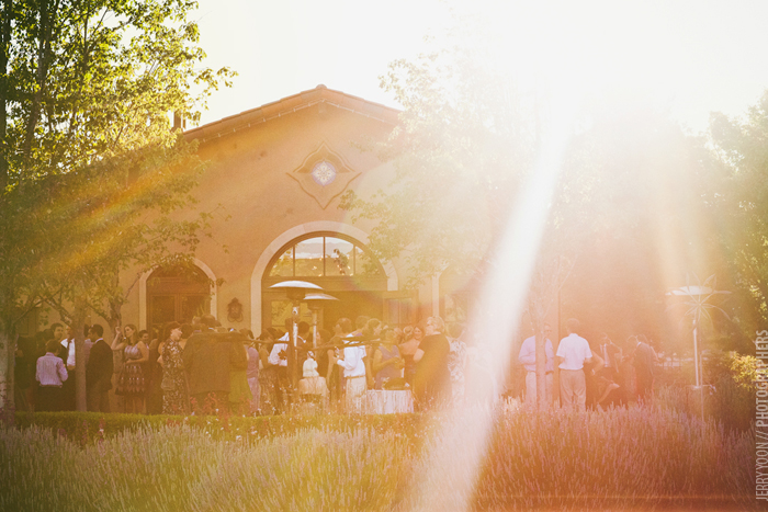 St_Francis_Winery_Sonoma_Wedding-25.JPG
