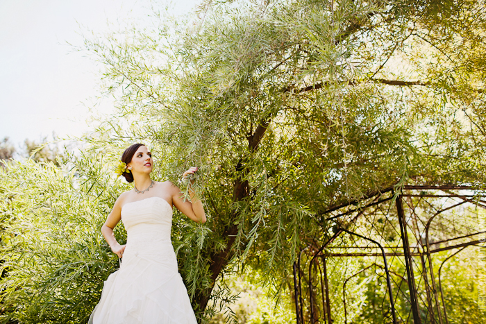 Gold_Hill_Olive_Oil_Wedding_Placerville_Photography-09.JPG