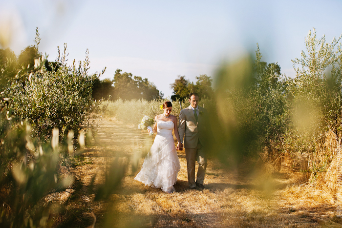 Gold_Hill_Olive_Oil_Wedding_Placerville_Photography-16.JPG