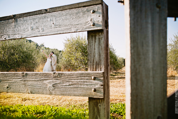 Gold_Hill_Olive_Oil_Wedding_Placerville_Photography-17.JPG