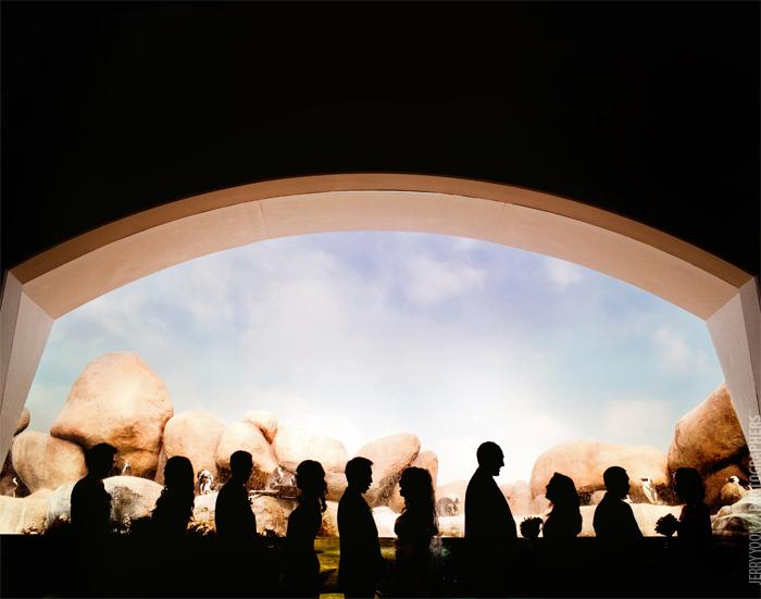 California_Academy_of_Science_Wedding_Shakespeare_Garden_Golden_Gate_Park_Wedding_Photographer-49.JPG