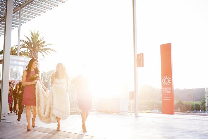 California_Academy_of_Science_Wedding_Shakespeare_Garden_Golden_Gate_Park_Wedding_Photographer-33.JPG